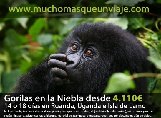 viaje organizado a Ruanda