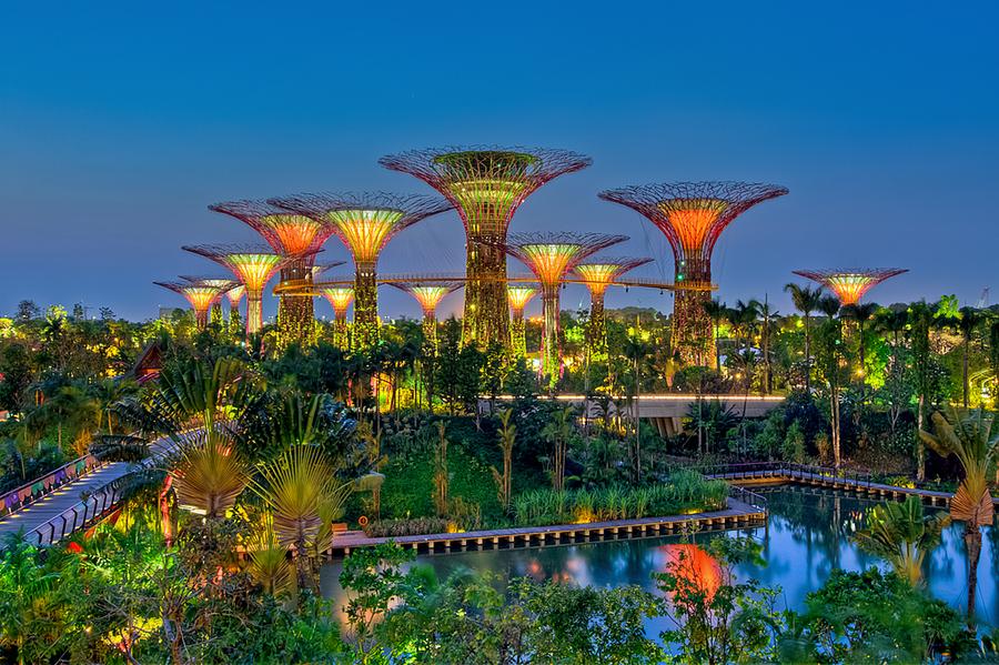 Un nuevo concepto de jard n los supertrees en singapore for Jardines verticales concepto