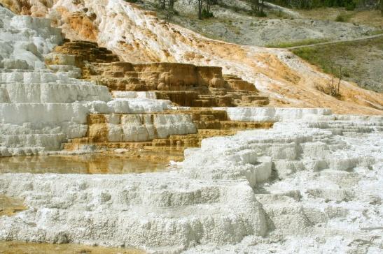 viaje a yellowstone