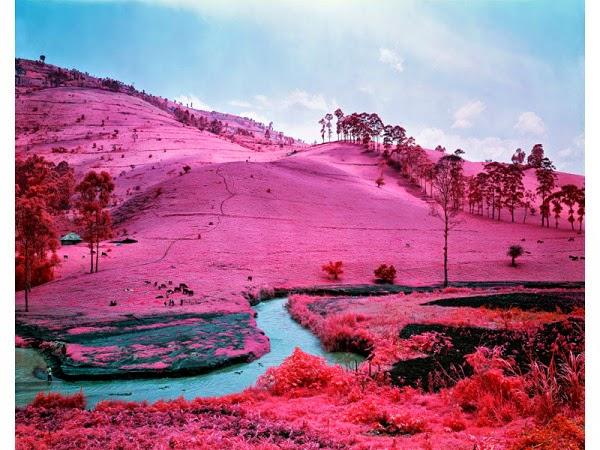 richard-mosse-infra-nieve-rosa