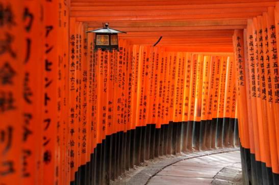 Viaje diferente a Japón
